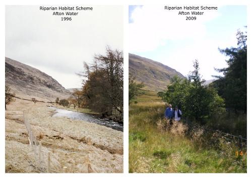 Afton habitat comparison
