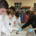 trout dissection 017